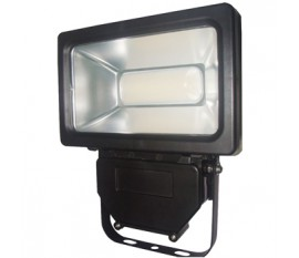 LED floodlight 30W