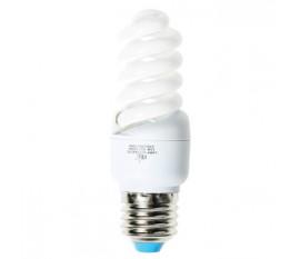 Fluorescent Lamp 15W E27 cool white
