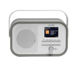 AFFICHEUR FM/DAB+ AVEC DIAPORAMA DAB - GRIS
