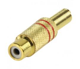 RCA contra plug red