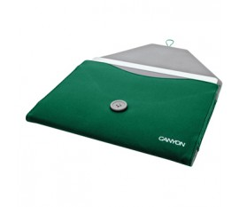 Envelope sleeve for iPad 2/3/4 green