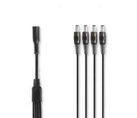 Câble Répartiteur d'Alimentation CCTV | 1x F à 4x M | 0,35 m | Connecteur c.c. 5,5 x 2,1