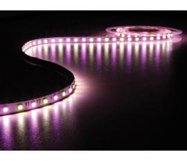FLEXIBLE À LED - RVB ET BLANC CHAUD 3500K - 300 LEDs - 5 m - 24 V