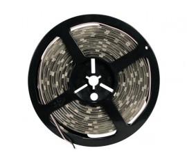 FLEXIBLE À LED - BLEU - 300LEDs - 5m - 24V