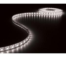 FLEXIBLE À LED - BLANC FROID 6500K - 300 LED - 5m - 24V