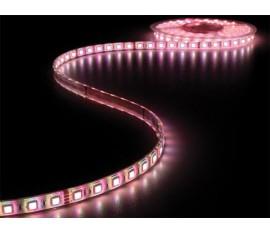 FLEXIBLE À LED - RVB - 300 LEDs - 5m - 24V