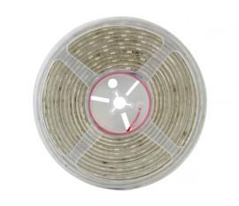 FLEXIBLE À LED - BLANC NEUTRE 4500 K - 300 LED - 5 m - 24 V
