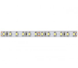 FLEXIBLE LED - BLANC FROID 6500 K - 120 LEDs/m - 40 m - 24 V
