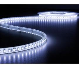 FLEXIBLE À LED - BLANC FROID 6500K - 600 LEDs - 5 m - 24 V